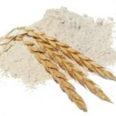 tonkolykalasz-es-liszt-150x150(2).jpg